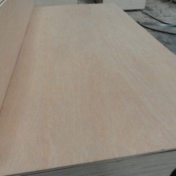 bintangor veneer plywood with combicore 12mm 16mm 18mm wood1-11